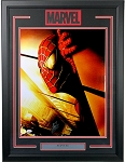 Stan Lee Autographed Spiderman Close-up 16x20 Photo Framed