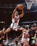 Dennis Rodman Autographed Chicago Bulls Mid-Air Dunking 8x10 Photo