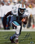 Brandon Marshall Autographed Miami Dolphins 8x10 Photo