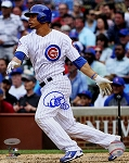 Willson Contreras Autographed Chicago Cubs Swinging 8x10 Photo