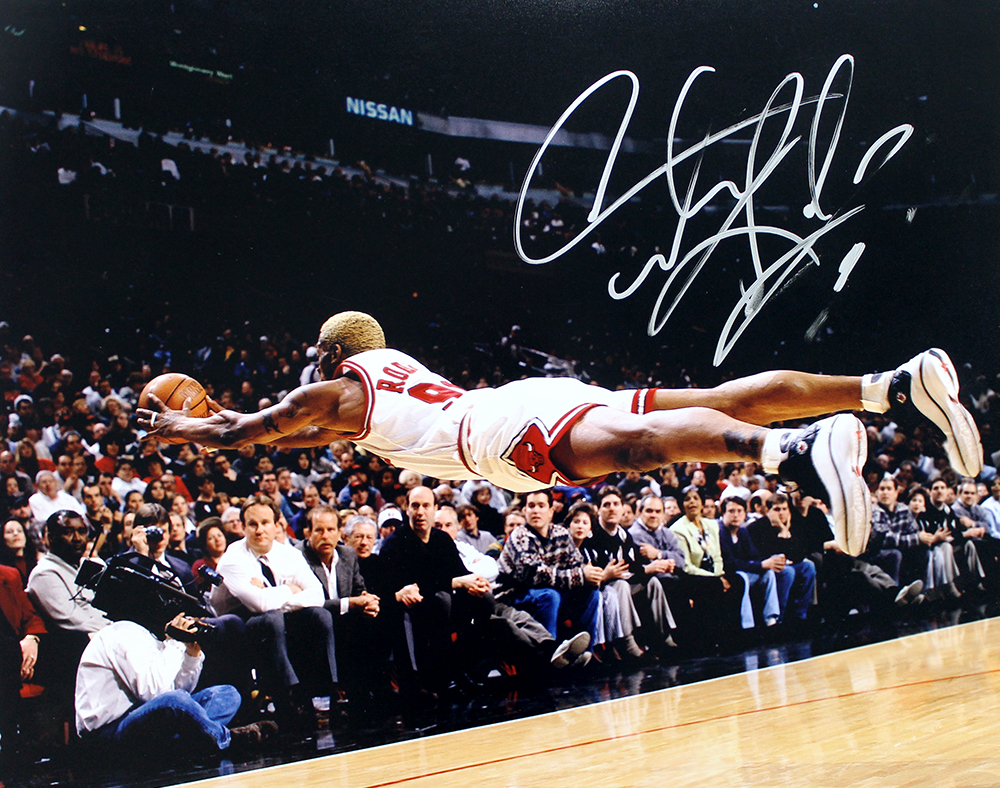 competitive price 866bf 491a0 Dennis Rodman Autographed Chicago Bulls 16x20 Photo