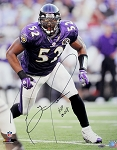 Ray Lewis Autographed Baltimore Ravens 16x20 Photo Inscribed HOF 18