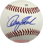 Denny Hamlin Autographed Official Southern League Baseball